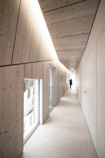 arquitectura_suspended forest_kengo kuma_corredor