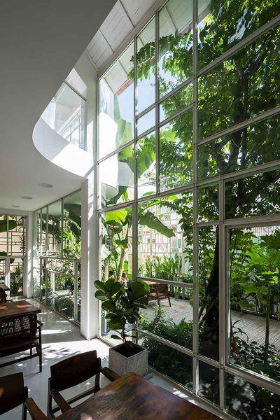 Arquitectura_t-house-keintruc_vista de vegetacion patio
