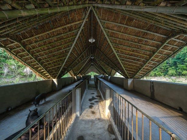 arquitectura_Taiyang_Organic_Farming_Commune_cubierta