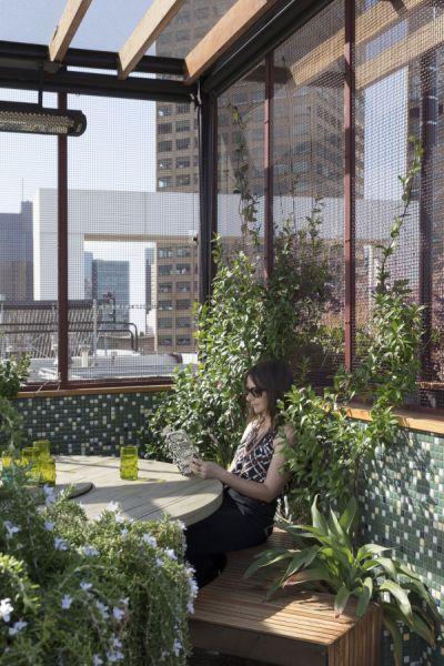 arquitectura_techo verde_Bent Architecture_zona comer