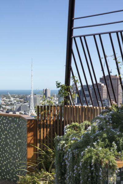 arquitectura_techo verde_Bent Architecture_madera