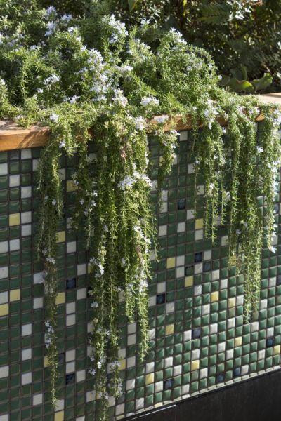 arquitectura_techo verde_Bent Architecture_jardinera