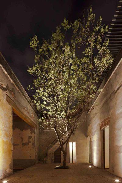 arquitectura_Tecolote patio6