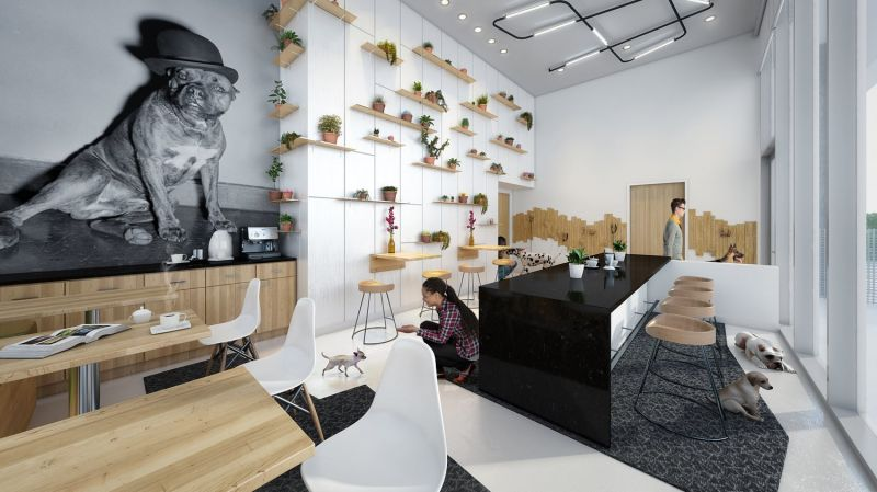 arquitectura_the independent_sala perros