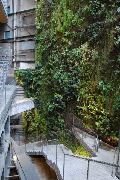 arquitectura verde_Patrick Blanc_Fábrica Moritz2