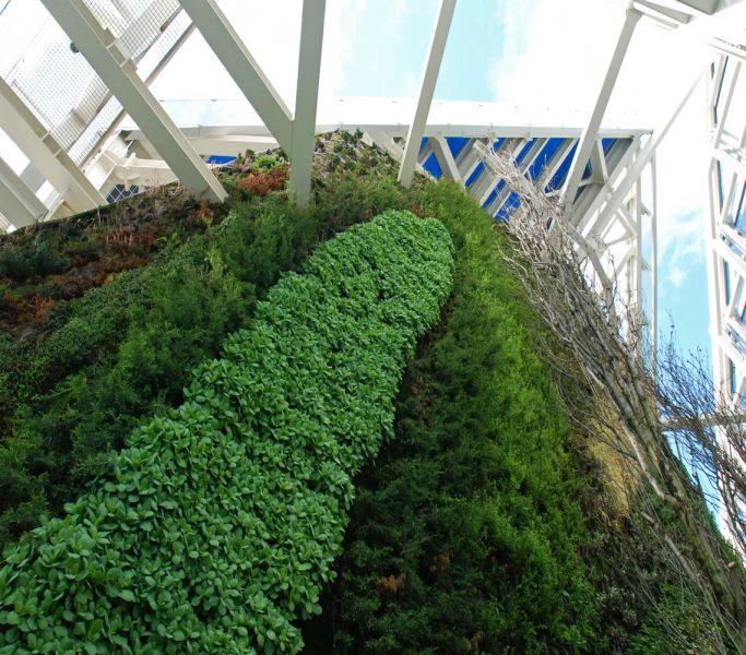arquitectura verde_Patrick Blanc_Torre de cristal2
