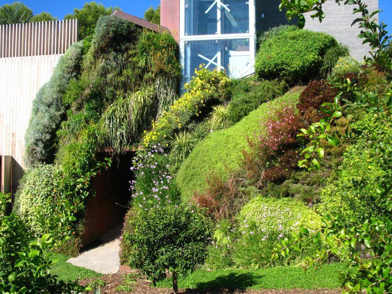 arquitectura verde_Patrick Blanc_vivienda particular Mallorca
