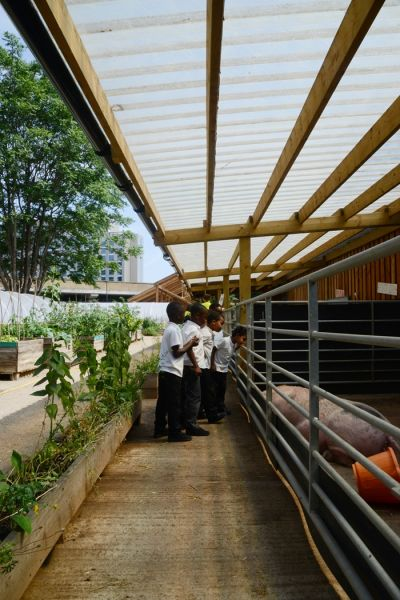 arquitectura_waterloo city farm_cubierta animales