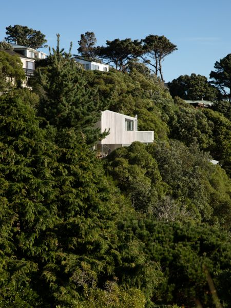arquitectura_y_empresa-X MARKS House_lugar 2