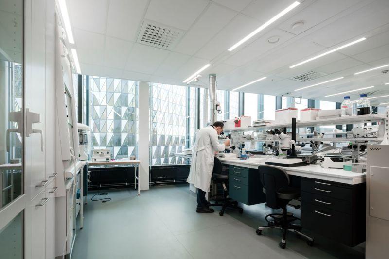 laboratorio de biomedicum
