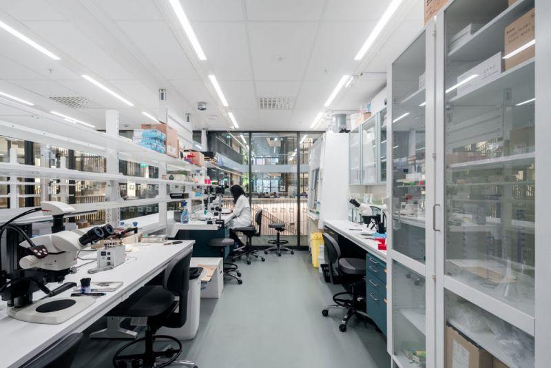 vista de laboratorio techo desmontable