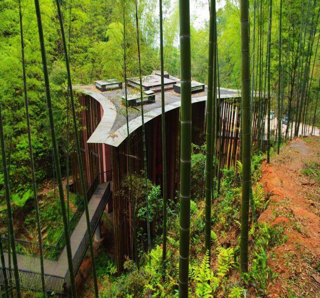 arquitectura_y_empresa_Bamboo gateaway_ conjunto