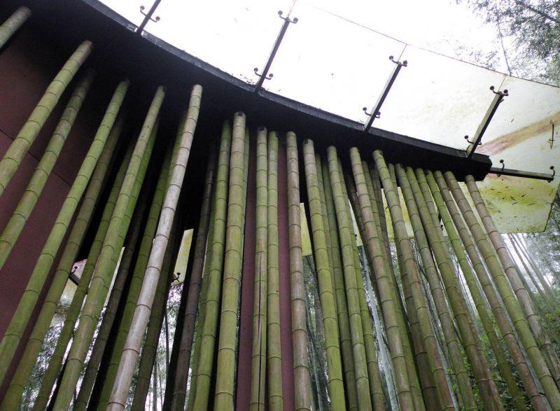 arquitectura_y_empresa_Bamboo gateaway_ techo vidrio