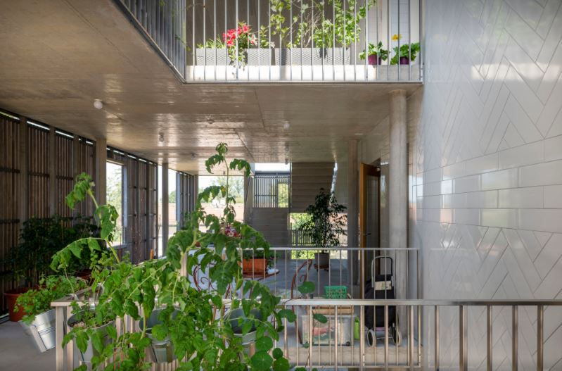 arquitectura_y_empresa_bonhote zapata_patio