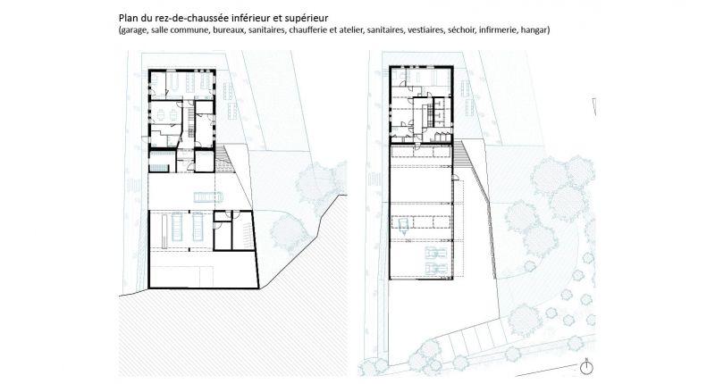arquitectura_y_empresa_brigada forestal_plantas