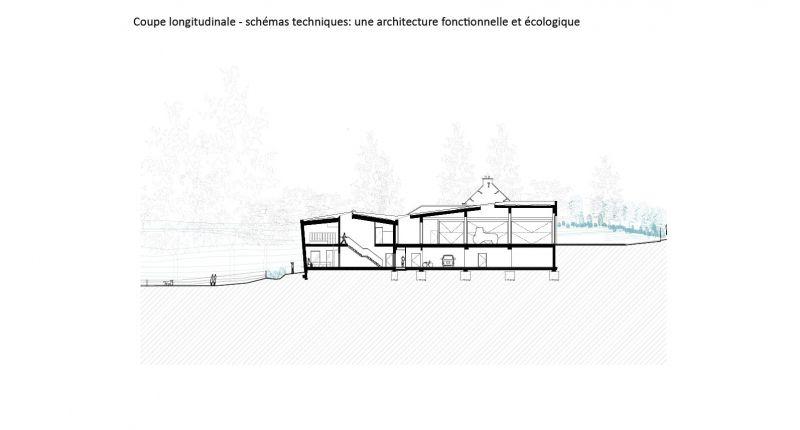 arquitectura_y_empresa_brigada forestal_sec