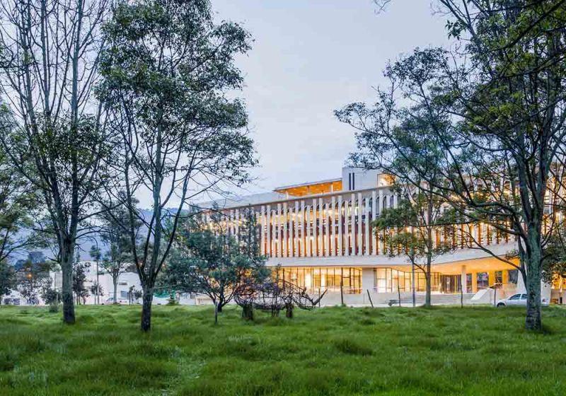 Vista a las edificaciones desde el espacio verde central del campus
