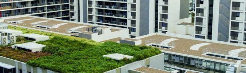 Arquitectura y Empresa, cubierta verde, cubierta ajardinada, ChovA, arquitectura sostenible, arquitectura ecológica, eficiencia energética, ChovAFOAM XPS, ChovADREN, ecoeficiencia, edificios eficientes