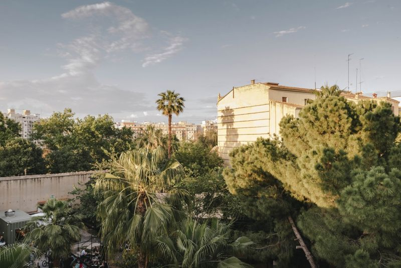 Convet Carmen - Parcela y conexión con la ciudad