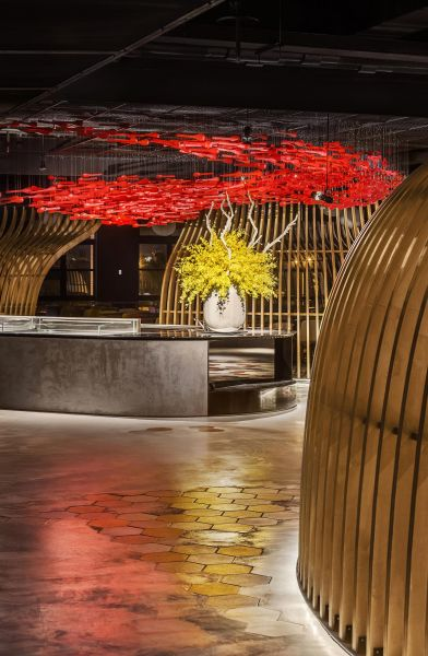 arquitectura_y_empresa_dining in nature_barra