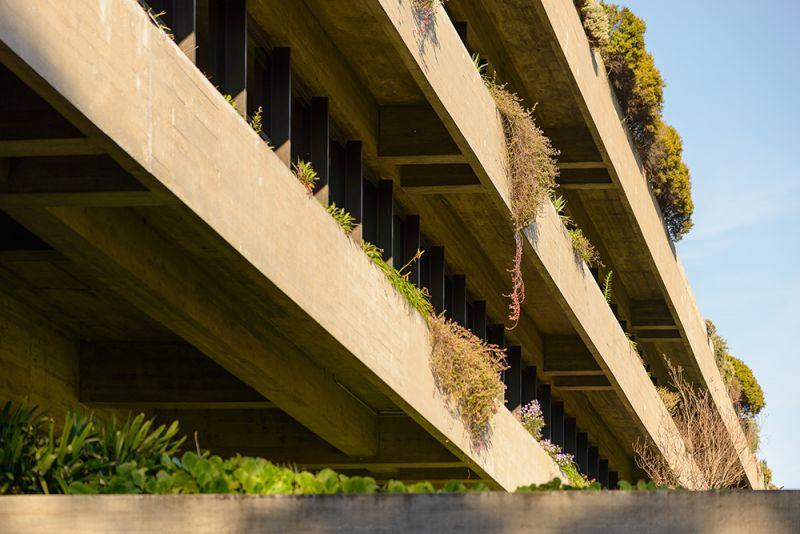 Fachada principal de hormigón con vegetación integrada