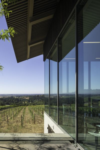 arquitectura_y_empresa_Furioso1 Wineyards_vidrio