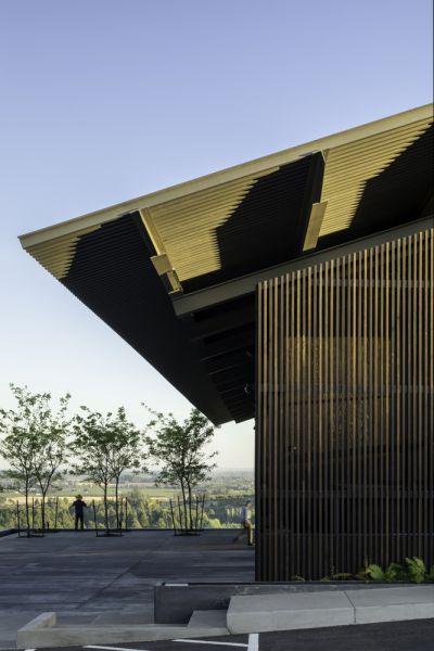 arquitectura_y_empresa_Furioso1 Wineyards_piel