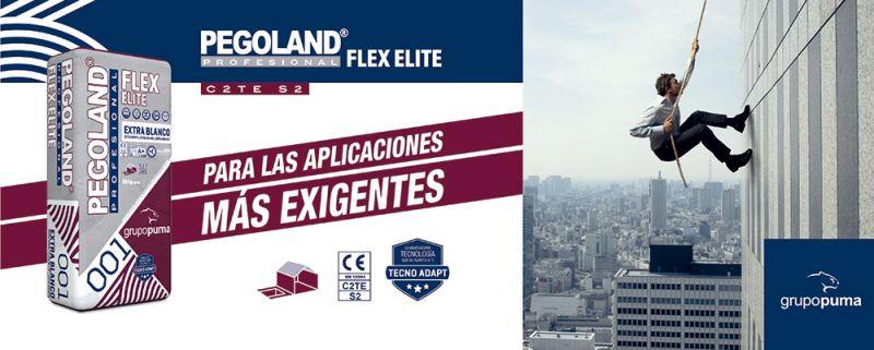 arquitectura grupo puma pegoland profesional flex elite