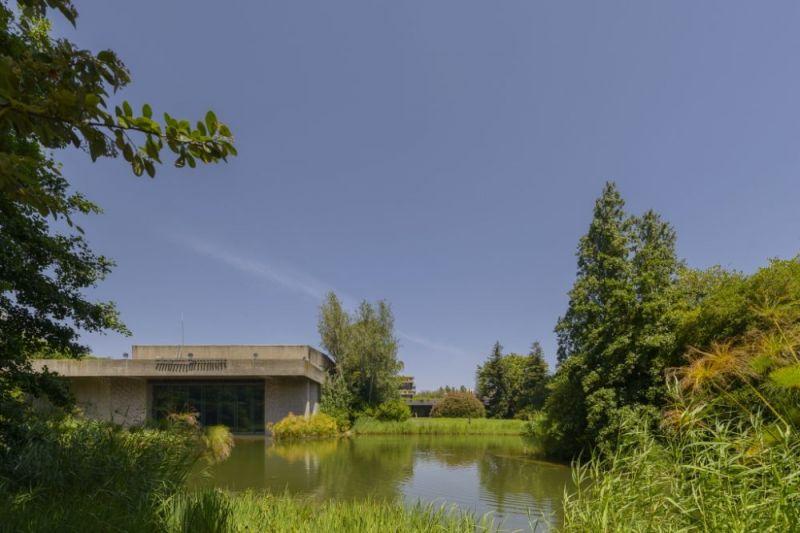 Vista del lago y  el auditorio de la fundación