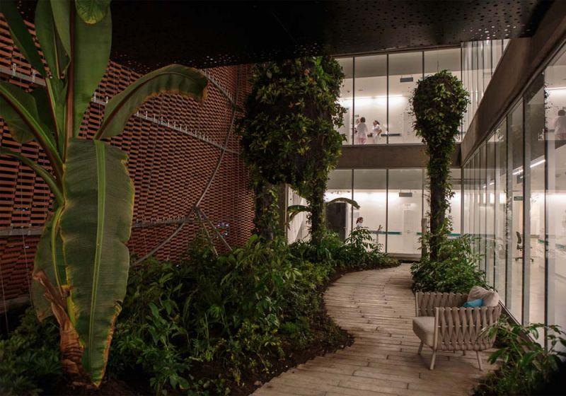 Fotografía perspectiva del jardín interno.