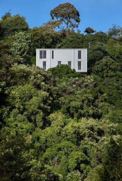 arquitectura_y_empresa_Kowhai House_lugar