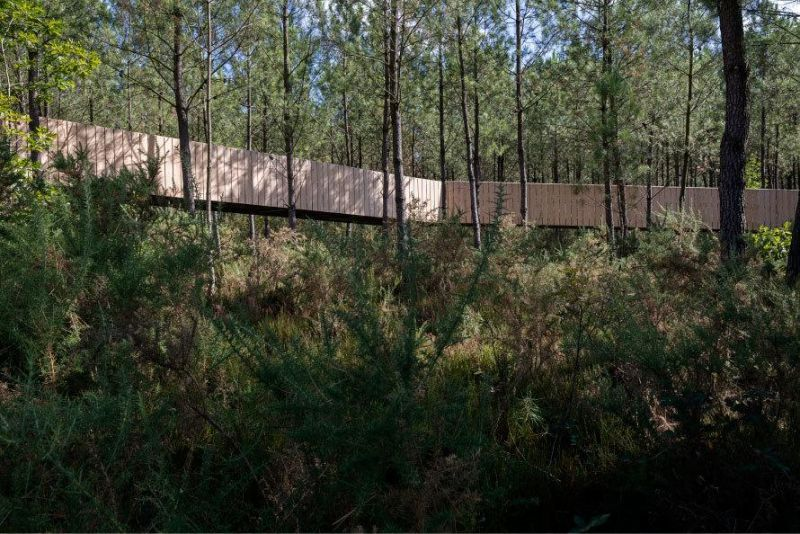 arquitectura_y_empresa_Labyrinth Park_pasarelas