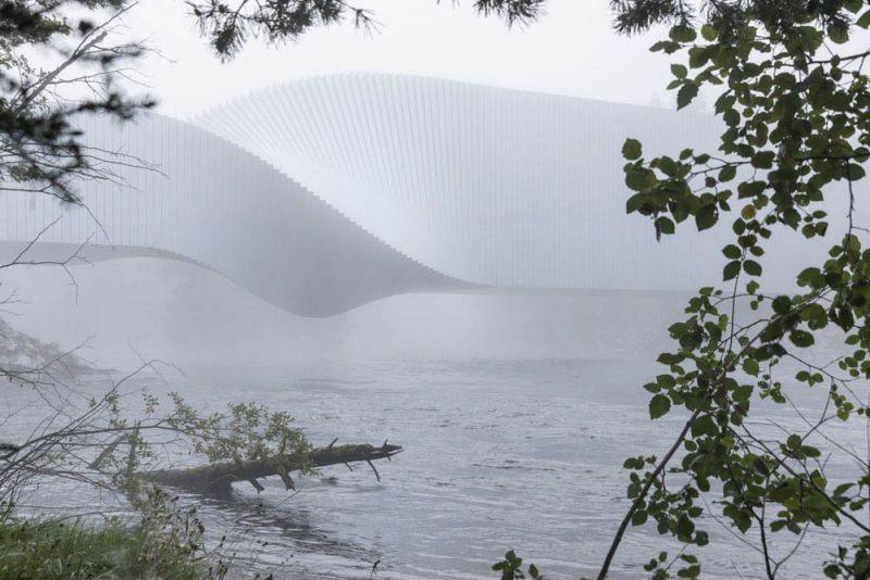 museo twist_ vista desde el bosque con niebla del rio