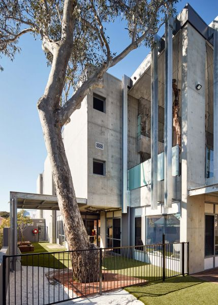 arquitectura_y_empresa_North Perth Childcare_vidrio y red