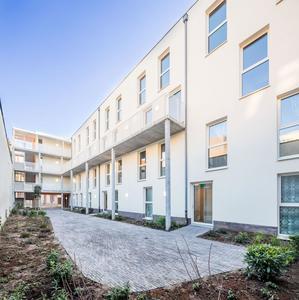 arquitectura_y_empresa_project pearl_patio