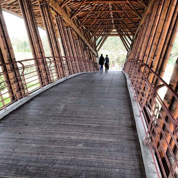 Fotografía perspectiva interna del puente