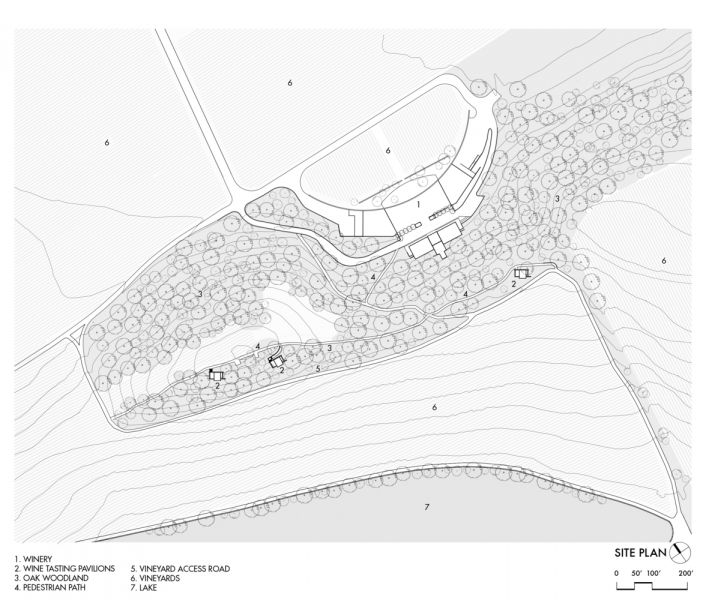arquitectura_y_empresa_quintessa pavilion_plano sit