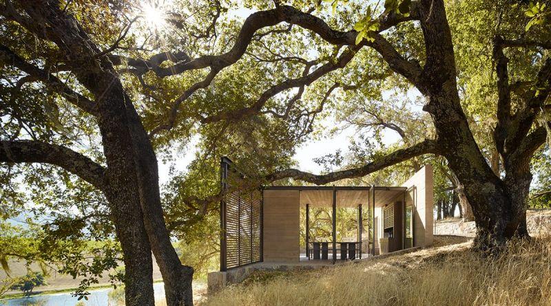 arquitectura_y_empresa_quintessa pavilion_árboles