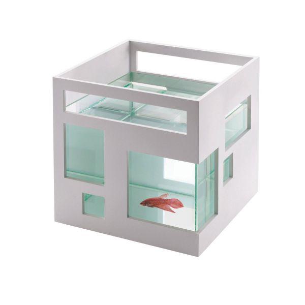 arquitectura regalo par arquitectos pecera cristal