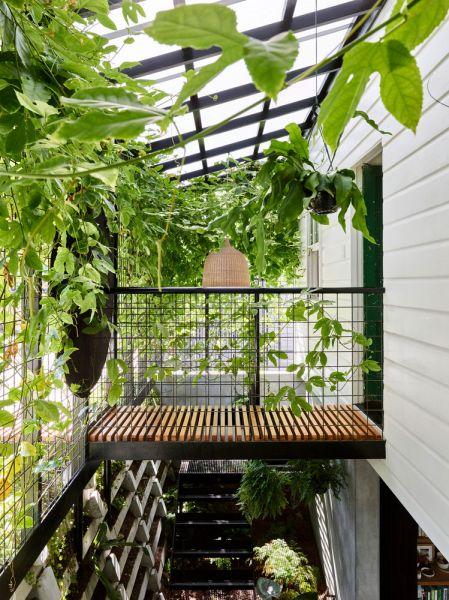 arquitectura_y_empresa_TerrariumHouse_pasarela patio