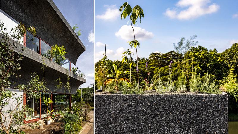 Arquitectura y Empresa, casa jardín, arquitectura verde, jardín interior, Kiyoaki Takeda Architects, Masaki Hamada, Tsuruoka House, Japón, Japan, vivienda, unifamiliar, Tokio, Tokyo, fauna, flora, arquitectura sostenible, sostenibilidad
