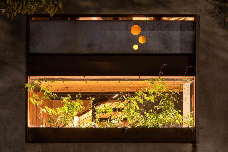 arquitectura y empresa_WELCOME-TO-THE-JUNGLE-HOUSE_vegetación