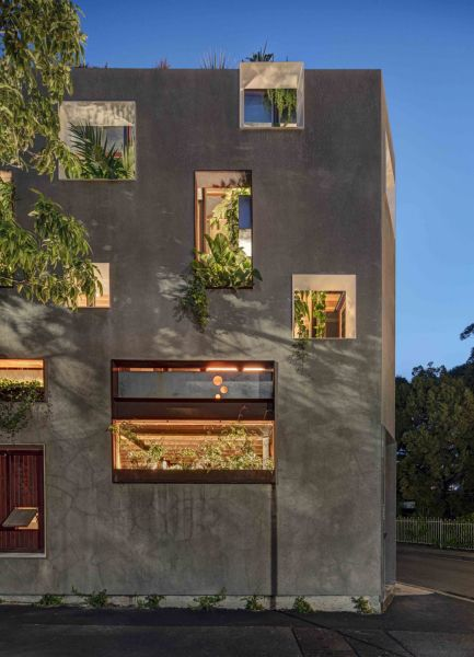 arquitectura y empresa_WELCOME-TO-THE-JUNGLE-HOUSE_EXTERIOR