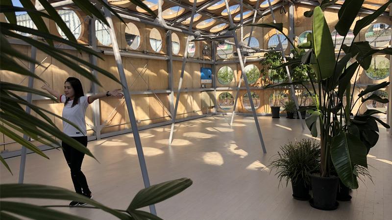 Arquitectura y Empresa, OBRA Architects, Seúl, Corea del Sur, Museo de Arte Moderno y Contemporáneo MMCA, Perpetual Spring, arquitectura efímera, espacio de debate, cambio climático, conferencias, arte, espacio de reunión