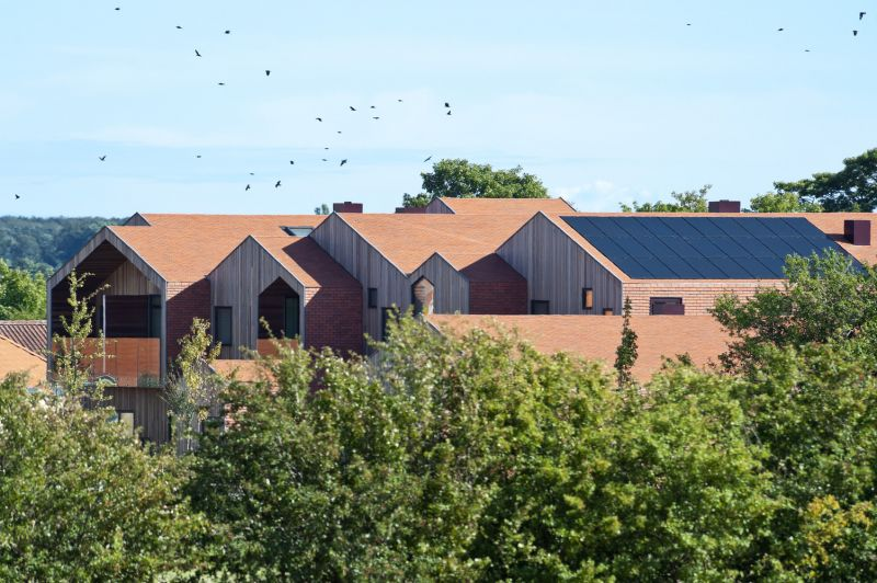 arquitectura_zebra house_ lugar