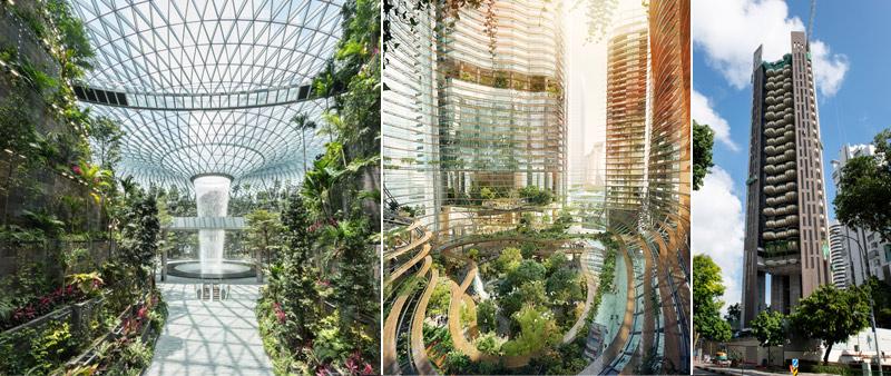 arquitectura, arquitecto, diseño, design, Swire Properties, Heatherwick Studio, Singapur, proyecto residencial, arquitectura verde, torre jardín, fachada verde, sostenibilidad, sostenible