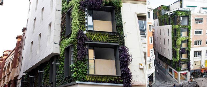 arquitectura, arquitecto, diseño, design, IGNACIO SOLANO, paisajismo, arquitectura verde, fachadas verdes, jardines urbanos, Madrid, España, biólogo