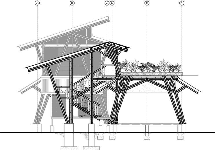 Estructura de bamb casa atrevida arquitectura for Construccion arquitectura