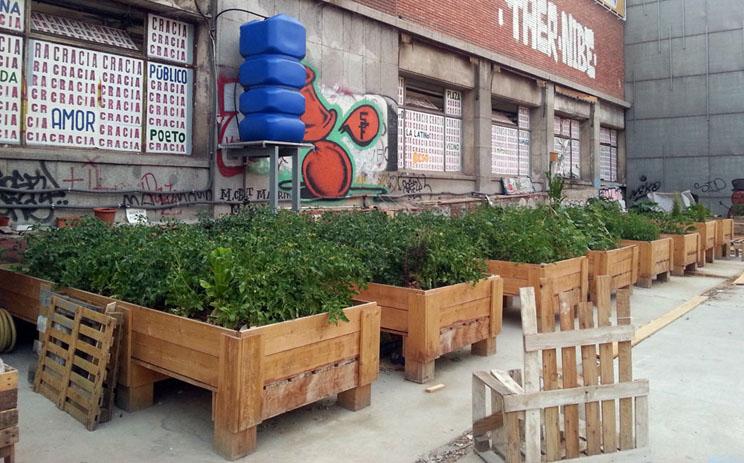 Huertos urbanos jardines comestibles ciudades - Huerto en la terraza ...
