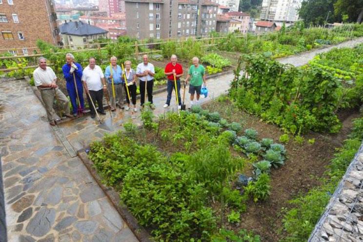 Huertos urbanos jardines comestibles ciudades for Imagenes del huerto vertical
